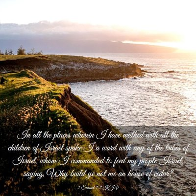 Picture 03 - 2 Samuel 7:7 KJV - In all the places wherein I have walked with all - Bible Verse Picture