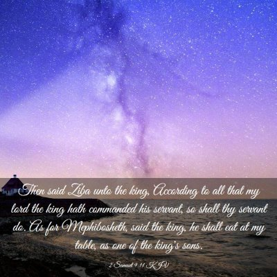 Picture 03 - 2 Samuel 9:11 KJV - Then said Ziba unto the king, According to all - Bible Verse Picture