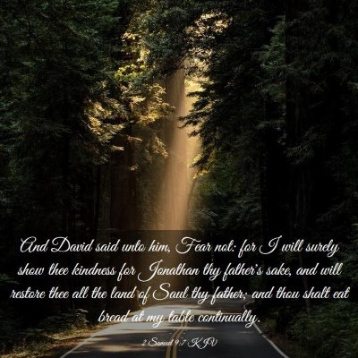 Picture 03 - 2 Samuel 9:7 KJV - And David said unto him, Fear not: for I will - Bible Verse Picture