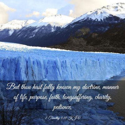 Picture 03 - 2 Timothy 3:10 KJV - But thou hast fully known my doctrine, manner of - Bible Verse Picture