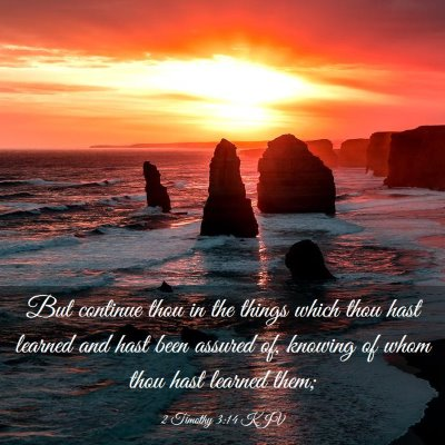 Picture 03 - 2 Timothy 3:14 KJV - But continue thou in the things which thou hast - Bible Verse Picture