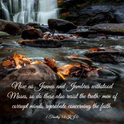Picture 03 - 2 Timothy 3:8 KJV - Now as Jannes and Jambres withstood Moses, so do - Bible Verse Picture