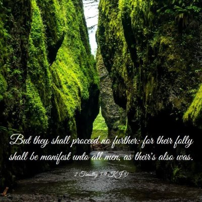 Picture 03 - 2 Timothy 3:9 KJV - But they shall proceed no further: for their - Bible Verse Picture