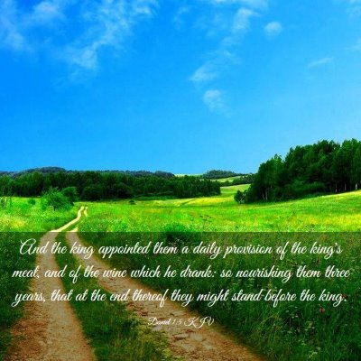 Picture 03 - Daniel 1:5 KJV - And the king appointed them a daily provision of - Bible Verse Picture