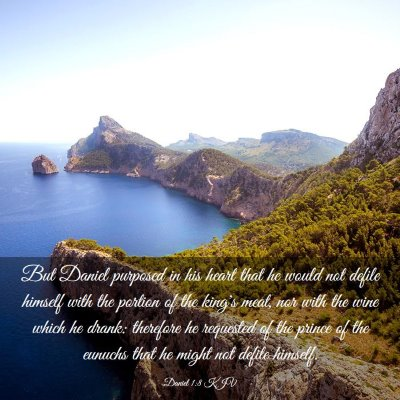 Picture 03 - Daniel 1:8 KJV - But Daniel purposed in his heart that he would - Bible Verse Picture