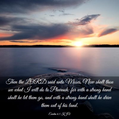 Picture 03 - Exodus 6:1 KJV - Then the LORD said unto Moses, Now shalt thou see - Bible Verse Picture