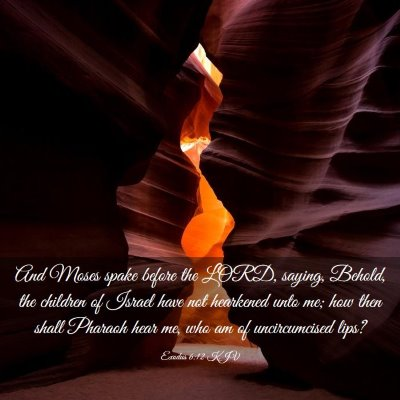 Picture 03 - Exodus 6:12 KJV - And Moses spake before the LORD, saying, Behold, - Bible Verse Picture