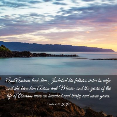 Picture 03 - Exodus 6:20 KJV - And Amram took him Jochebed his father's sister - Bible Verse Picture