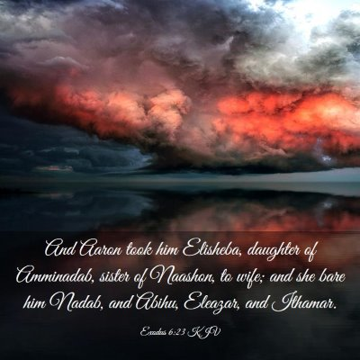 Picture 03 - Exodus 6:23 KJV - And Aaron took him Elisheba, daughter of - Bible Verse Picture