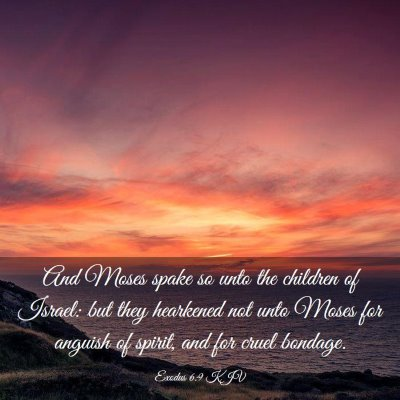 Picture 03 - Exodus 6:9 KJV - And Moses spake so unto the children of Israel: - Bible Verse Picture