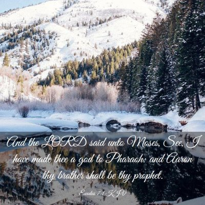 Picture 03 - Exodus 7:1 KJV - And the LORD said unto Moses, See, I have made - Bible Verse Picture