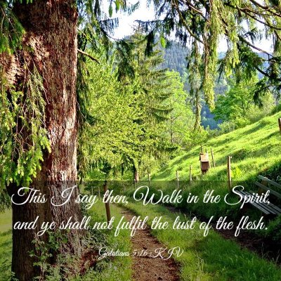 Picture 03 - Galatians 5:16 KJV - This I say then, Walk in the Spirit, and ye shall - Bible Verse Picture