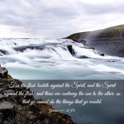 Picture 03 - Galatians 5:17 KJV - For the flesh lusteth against the Spirit, and the - Bible Verse Picture