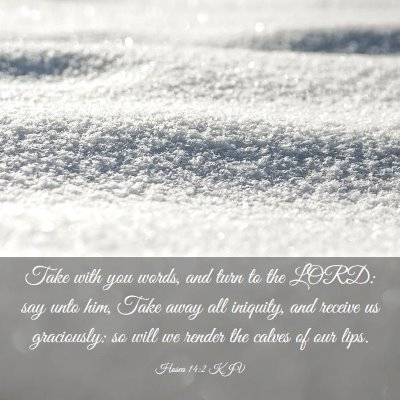 Picture 03 - Hosea 14:2 KJV - Take with you words, and turn to the LORD: say - Bible Verse Picture