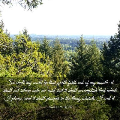 Picture 03 - Isaiah 55:11 KJV - So shall my word be that goeth forth out of my - Bible Verse Picture