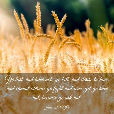 Picture 03 - James 4:2 KJV - Ye lust, and have not: ye kill, and desire to - Bible Verse Picture