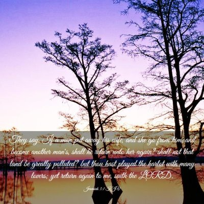 Picture 03 - Jeremiah 3:1 KJV - They say, If a man put away his wife, and she go - Bible Verse Picture
