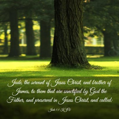 Picture 03 - Jude 1:1 KJV - Jude, the servant of Jesus Christ, and brother of - Bible Verse Picture