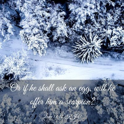 Picture 03 - Luke 11:12 KJV - Or if he shall ask an egg, will he offer him a - Bible Verse Picture