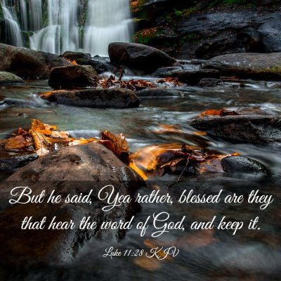 Picture 03 - Luke 11:28 KJV - But he said, Yea rather, blessed are they that - Bible Verse Picture