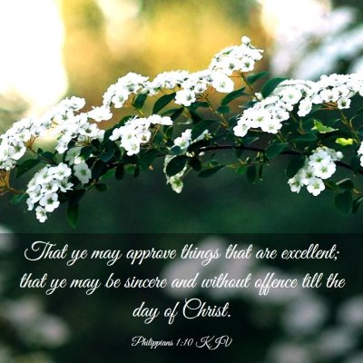 Picture 03 - Philippians 1:10 KJV - That ye may approve things that are excellent; - Bible Verse Picture