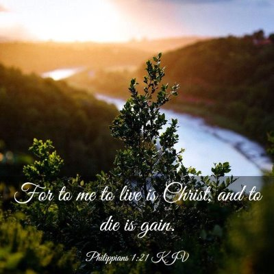 Picture 03 - Philippians 1:21 KJV - For to me to live is Christ, and to die is - Bible Verse Picture