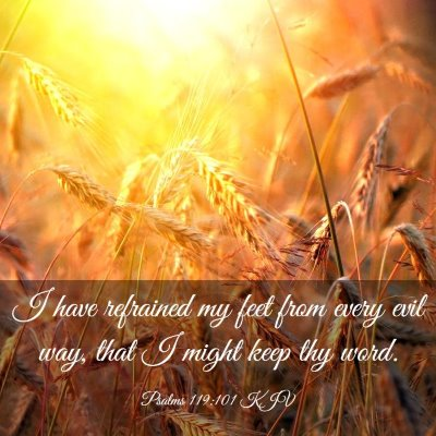 Picture 03 - Psalms 119:101 KJV - I have refrained my feet from every evil way, - Bible Verse Picture