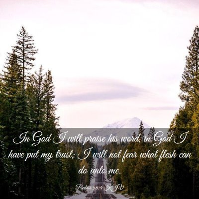 Picture 03 - Psalms 56:4 KJV - In God I will praise his word, in God I have put - Bible Verse Picture