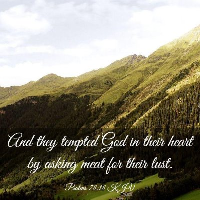 Picture 03 - Psalms 78:18 KJV - And they tempted God in their heart by asking - Bible Verse Picture