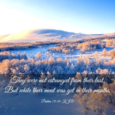 Picture 03 - Psalms 78:30 KJV - They were not estranged from their lust. But - Bible Verse Picture
