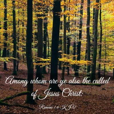 Picture 03 - Romans 1:6 KJV - Among whom are ye also the called of Jesus - Bible Verse Picture