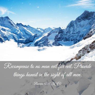 Picture 03 - Romans 12:17 KJV - Recompense to no man evil for evil. Provide - Bible Verse Picture