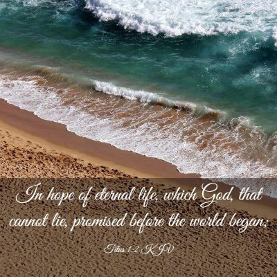 Picture 03 - Titus 1:2 KJV - In hope of eternal life, which God, that cannot - Bible Verse Picture