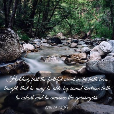 Picture 03 - Titus 1:9 KJV - Holding fast the faithful word as he hath been - Bible Verse Picture