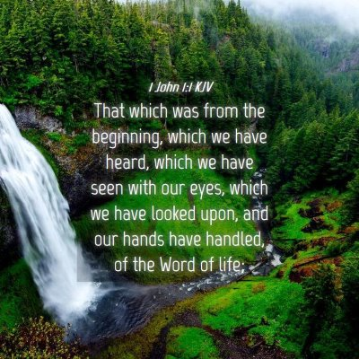 Picture 04 - 1 John 1:1 KJV - That which was from the beginning, which we have - Bible Verse Picture