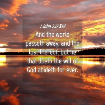 Picture 04 - 1 John 2:17 KJV - And the world passeth away, and the lust thereof: - Bible Verse Picture