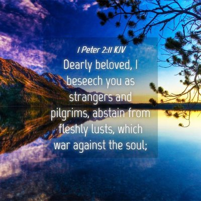 Picture 04 - 1 Peter 2:11 KJV - Dearly beloved, I beseech you as strangers and - Bible Verse Picture