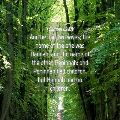 Picture 04 - 1 Samuel 1:2 KJV - And he had two wives; the name of the one was - Bible Verse Picture