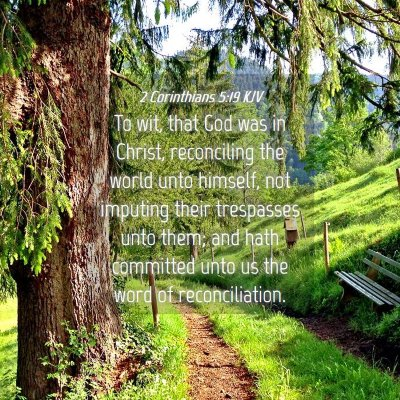Picture 04 - 2 Corinthians 5:19 KJV - To wit, that God was in Christ, reconciling the - Bible Verse Picture