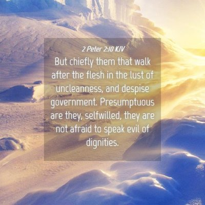 Picture 04 - 2 Peter 2:10 KJV - But chiefly them that walk after the flesh in the - Bible Verse Picture
