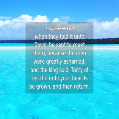 Picture 04 - 2 Samuel 10:5 KJV - When they told it unto David, he sent to meet - Bible Verse Picture