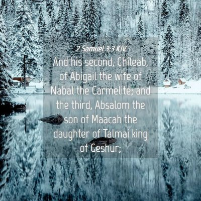 Picture 04 - 2 Samuel 3:3 KJV - And his second, Chileab, of Abigail the wife of - Bible Verse Picture