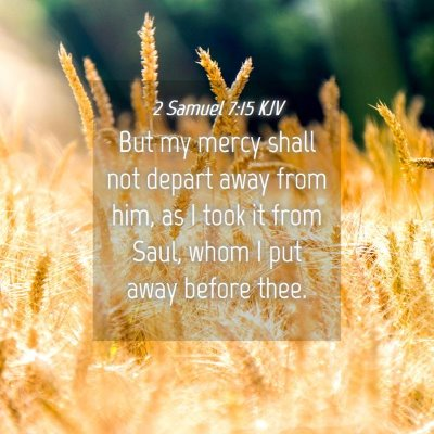 Picture 04 - 2 Samuel 7:15 KJV - But my mercy shall not depart away from him, as I - Bible Verse Picture