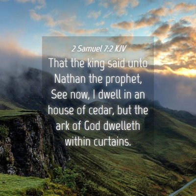 Picture 04 - 2 Samuel 7:2 KJV - That the king said unto Nathan the prophet, See - Bible Verse Picture