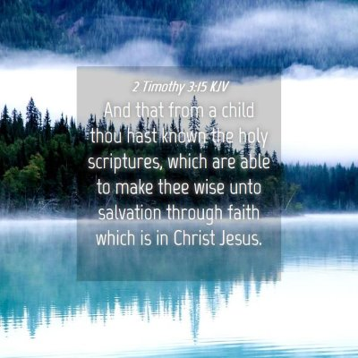 Picture 04 - 2 Timothy 3:15 KJV - And that from a child thou hast known the holy - Bible Verse Picture