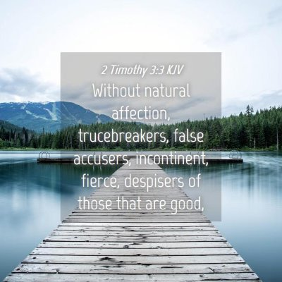 Picture 04 - 2 Timothy 3:3 KJV - Without natural affection, trucebreakers, false - Bible Verse Picture