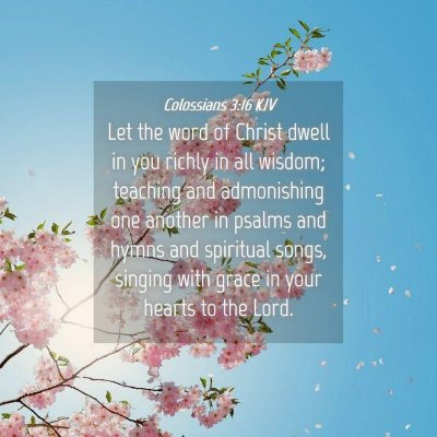 Picture 04 - Colossians 3:16 KJV - Let the word of Christ dwell in you richly in all - Bible Verse Picture