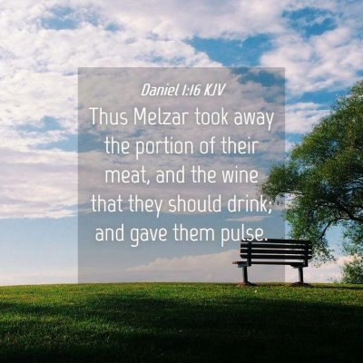 Picture 04 - Daniel 1:16 KJV - Thus Melzar took away the portion of their meat, - Bible Verse Picture