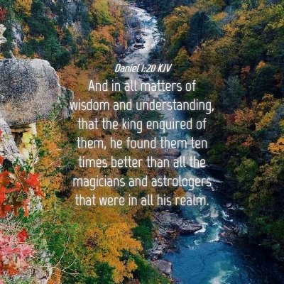 Picture 04 - Daniel 1:20 KJV - And in all matters of wisdom and understanding, - Bible Verse Picture
