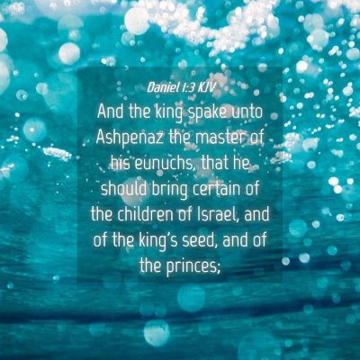 Picture 04 - Daniel 1:3 KJV - And the king spake unto Ashpenaz the master of - Bible Verse Picture